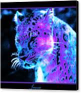 Jaguar  Canvas Print by Nick Gustafson