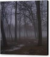 January Fog 2 Canvas Print