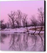 January Thaw  Canvas Print by Lori Frisch