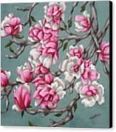 Japenese Magnolia Canvas Print