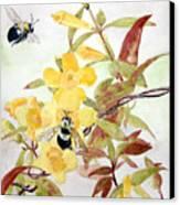 Jessamine Bee Mine Canvas Print