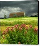 Joe Pye Weed And Barn Canvas Print