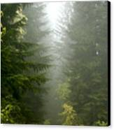 Journey Through The Fog Canvas Print