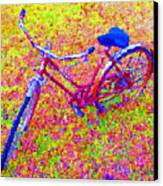 Joy, The Bike Ride Canvas Print