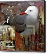 Junkyard Gull Canvas Print