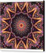 kaleido Perf10 9cAvi 44 Canvas Print