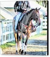 Keeneland Pony Boy Canvas Print by Tom Schmidt