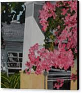 Key West Bougainvillea Canvas Print by John Schuller
