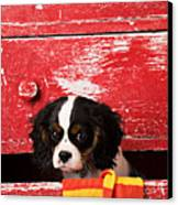 King Charles Cavalier Puppy  Canvas Print
