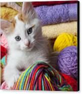 Kitten In Yarn Canvas Print by Garry Gay
