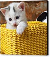 Kitten In Yellow Basket Canvas Print by Garry Gay