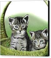Kitty Caddy Canvas Print