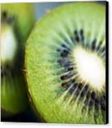 Kiwi Fruit Halves Canvas Print by Ray Laskowitz - Printscapes