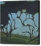 La Jolla IIi Canvas Print