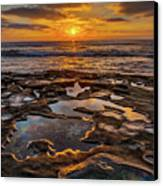 La Jolla Tidepools Canvas Print by Peter Tellone