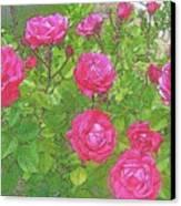 La Vie En Roses Canvas Print by Jen White