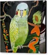 Lacey Jewel Bird Canvas Print
