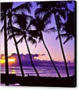 Lanai Sunset Canvas Print