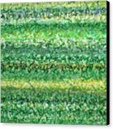Language Of Grass Canvas Print by Jason Messinger
