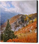 Last Fall Canvas Print