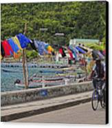 Laundry Drying- St Lucia. Canvas Print by Chester Williams