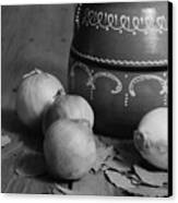 Laurel And Onions Canvas Print