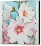 Lavater Canvas Print