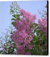 Lavender Silhouettes Canvas Print