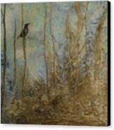 Lawbird Canvas Print