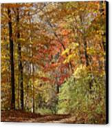 Leaf Covered Path Canvas Print by Kathy DesJardins