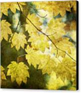 Leaf Zen T Canvas Print