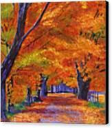 Leafy Lane Canvas Print by David Lloyd Glover