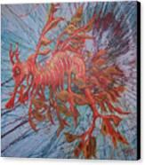 Leafy Sea Dragon Canvas Print by Lawry Love