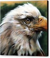 Leather Eagle Canvas Print by J W Baker