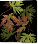 Leaves On Leaves Canvas Print