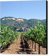 Ledson Winery And Vineyard Sonoma County California Canvas Print