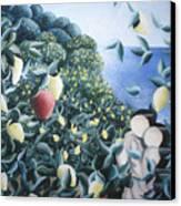 Lemon Trees Canvas Print