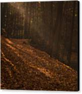 Light Breaking Thru Canvas Print by Andrew Soundarajan