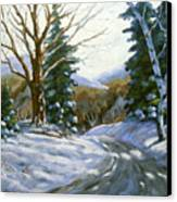 Light Breaks Through The Pines Canvas Print