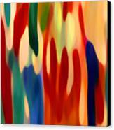 Light Through Flowers Canvas Print by Amy Vangsgard