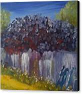Lilacs On A Fence  Canvas Print by Steve Jorde