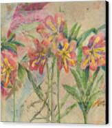 Lilies In Disguise Canvas Print