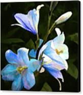 Lilies Canvas Print by Suni Roveto