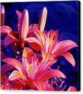 Lillies In Blue Canvas Print