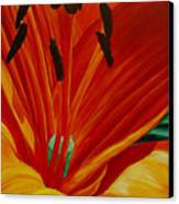 Lilly Vertigo Canvas Print