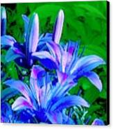 Lily In Green Canvas Print
