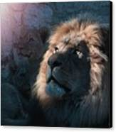 Lion Light Canvas Print by Bill Stephens