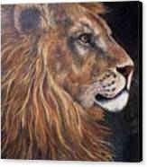 Lions Portrait Canvas Print