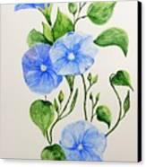 Liseron Canvas Print