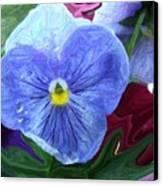 Little Blues Canvas Print